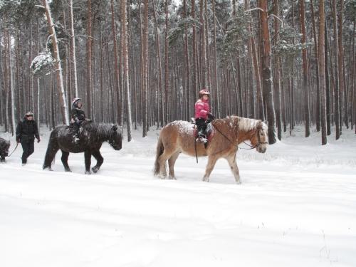 Reiturlaub im Winter im Reiterhof, Groß Briesen, Brandenburg bei Berlin, nahe dem Naturpark Hoher Fläming