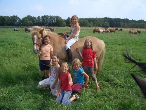 Reiterferien für Kinder im Reiterhof, Groß Briesen, Brandenburg bei Berlin, nahe dem Naturpark Hoher Fläming